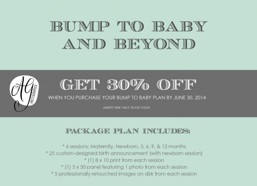 Bump-To-Baby-Plan 2014